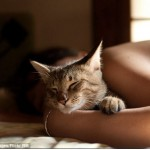 Your Cat Can Soothe and Comfort You at Night