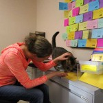 Social Media Helps Shelter Cat Find New Home After Five Years