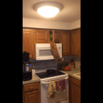 Determined Cat Climbs Into Kitchen Cupboard