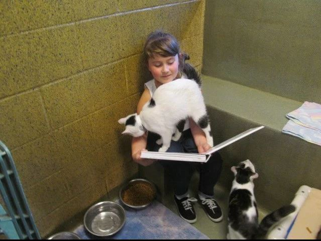 Life Lessons: Children Build Skills by Reading to Shelter Cats and Dogs