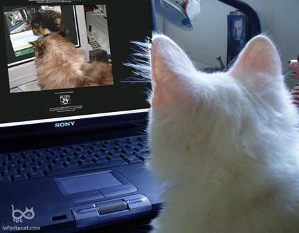 ICP 365 Gandalf noting Kami scrutinizing Ripley watching
