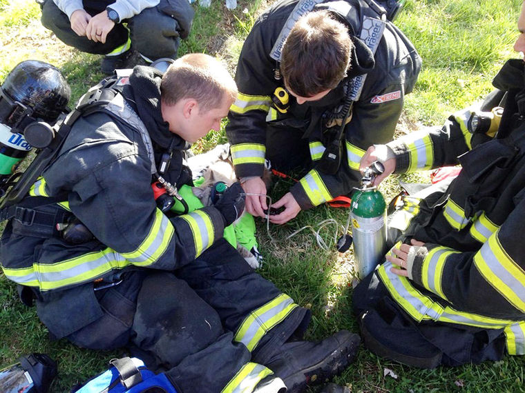 Firefighters Revive Cat With Special Pet Oxygen Mask