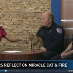 "Rescuers Reunited With ""Miracle"" Cat"
