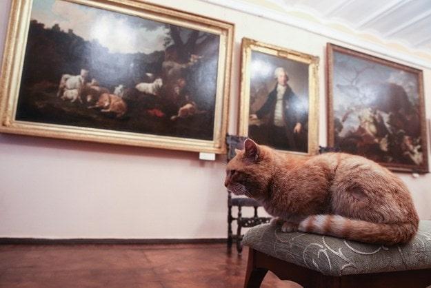 Image source: Serpukhov Historical and Art Museum