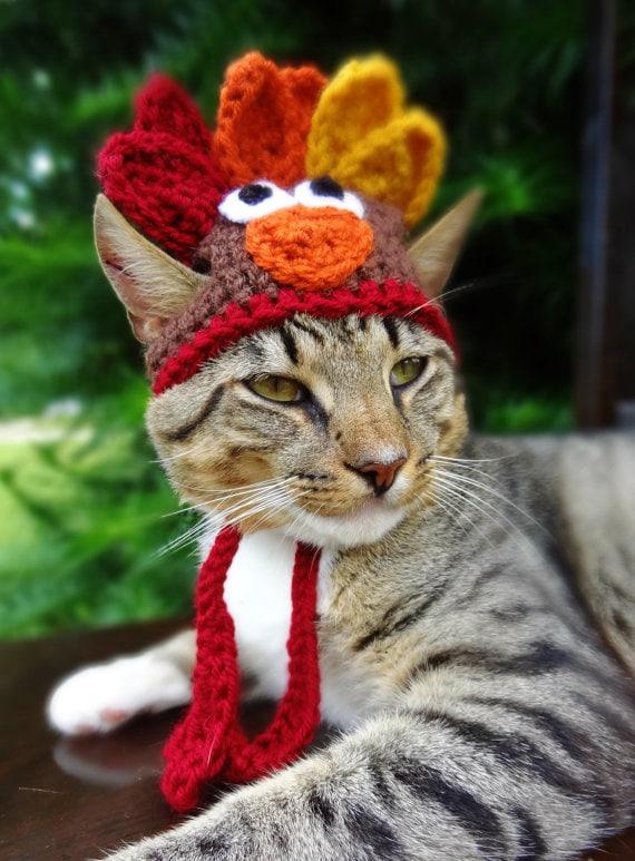 meredith langley turkey hat