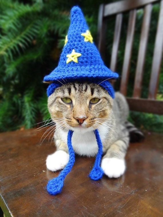 meredith langley wizard hat