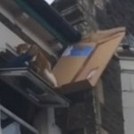 Cat Rescued From a Roof With a Cardboard Box Slide