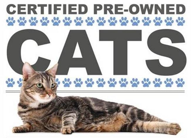 AHA Certified Pre-Owned