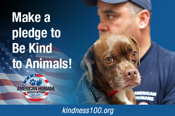 AHA be-kind-to-animals-widget