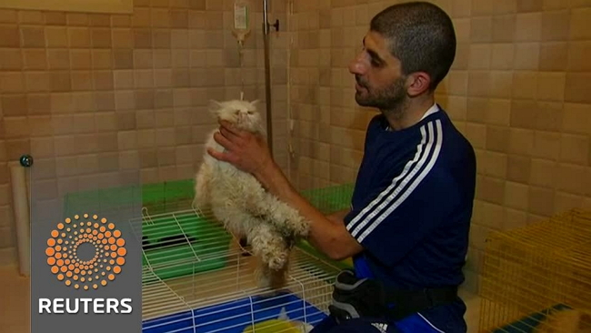 Young Man Selflessly Cares for Saudi Arabian Strays