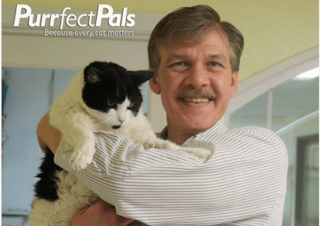 """""""Love and Purrs:"""" Adopted Cat Sends Email to Shelter Pals"""