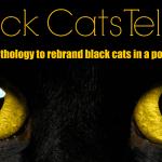 Kickstarter Campaign: Black Cats Tell All