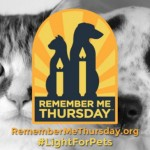 4th Annual Remember Me Thursday Shines Light for Orphan Pets