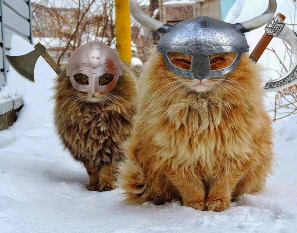 Scientists Find DNA Evidence of Viking Cats