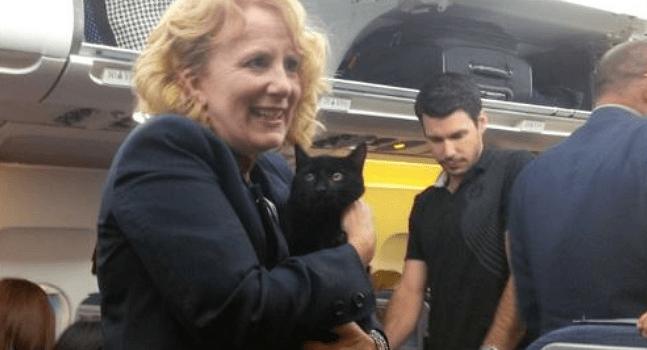 Sneaky Feline Escapes Carrier & Settles Under E1 for Flight