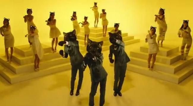 Dancing Black Cats Celebrate Company's 40th Anniversary