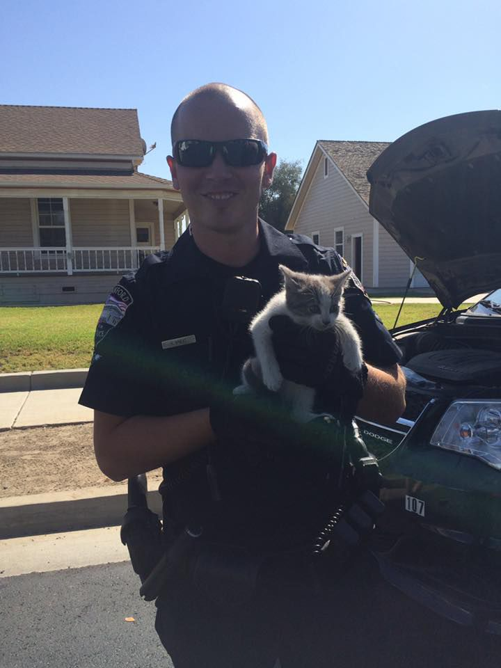 Police Officer Rescues Cat From Car, Adopts Him