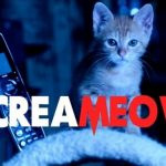 ScreaMEOW Will Get You Ready for Halloween…or Make You Giggle!