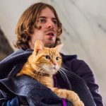 'A Street Cat Named Bob' Movie Blamed for Ginger Cat Thefts