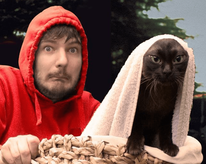 Funny Instagram Guy and Cats Recreate Iconic Movie Moments