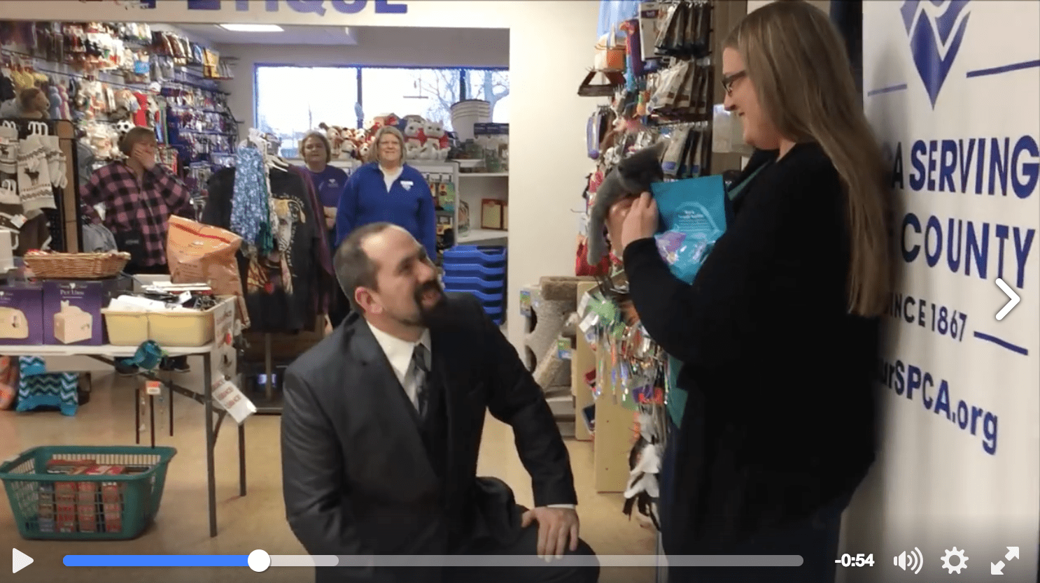Kitten and SPCA Help Man Pop the Question - Life With Cats