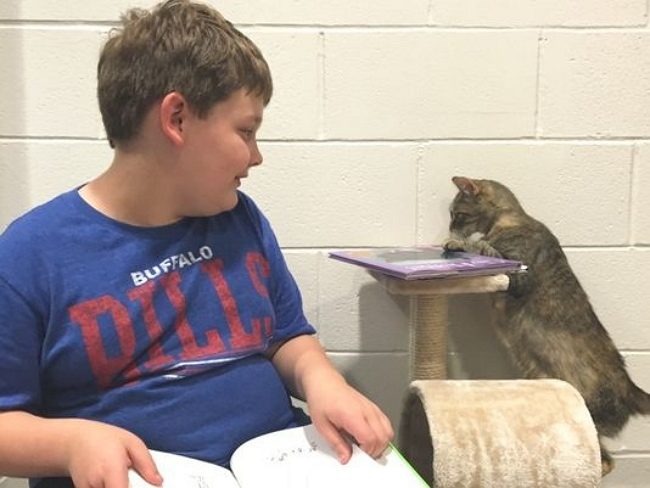 Cranky Shelter Cat Charms Special Needs Boy