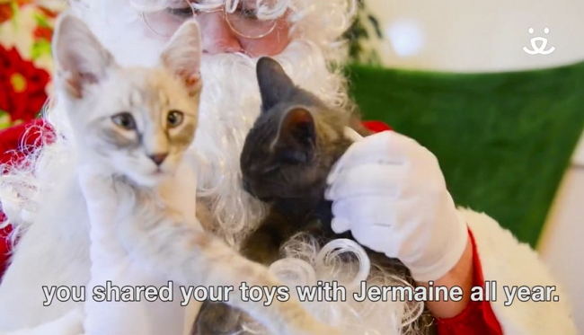 "Santa Claus Visits Adoptable Pets on the ""Nice List"""