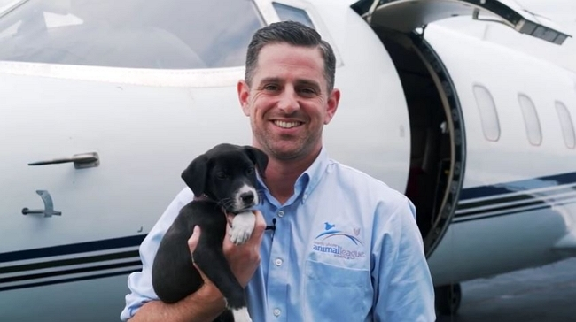 Pets-On-Jets: PrivateFly Raising Awareness on Adoptable Pets in NYC