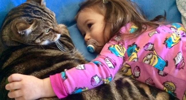 URGENT HELP NEEDED: Oliver in Desperate Transplant Situation