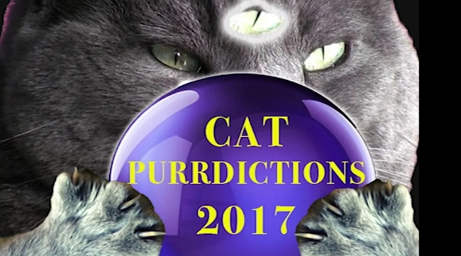 purrdictions
