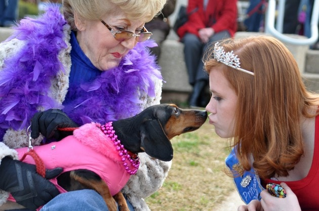 Barkus and Meoux: Mardi Gras Celebration Goes to the Dogs…& Cats & Chickens