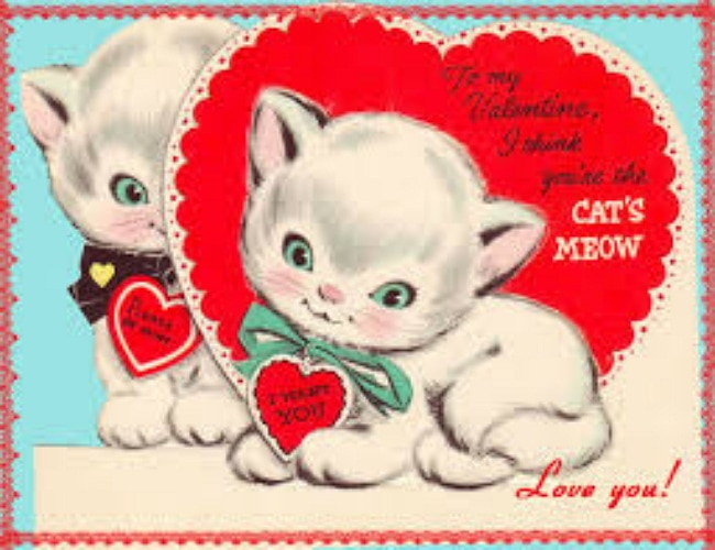 Happy Valentine's Day Kitty-Style