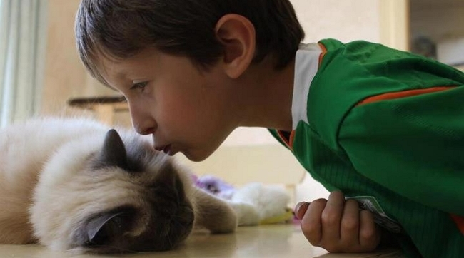 Cat Helps Young Man Open Up and Communicate