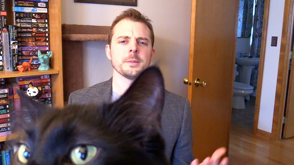 The Ultimate Disruption: When Cats Assist in an Interview