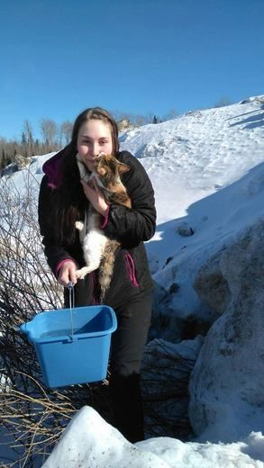 Woman in Canada Rescues Cat Trapped in Solid Ice