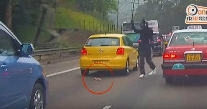 Man Saves Kitten From Highway Traffic in Hong Kong