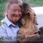 The Amazing Gitmo Cat Rescue Airlift