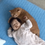 Baby and Cat Are Snuggle Buddies