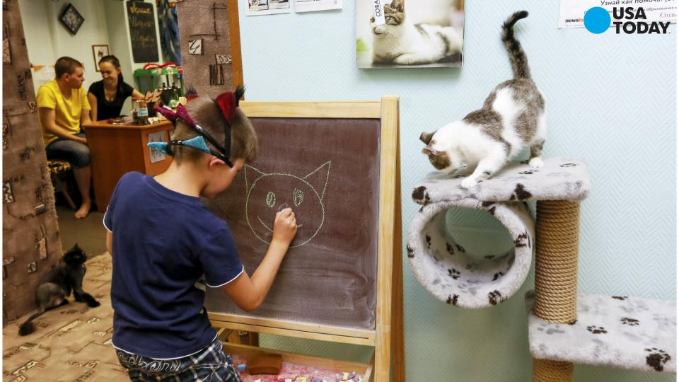 Pop-Up Mewsic Kitty Cafe is Teaser of Cafe to Come