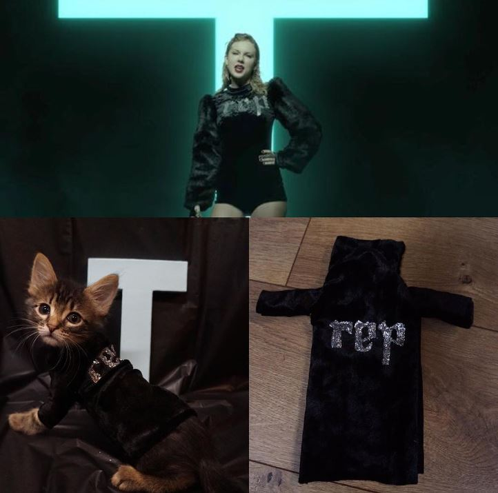 TS Dobby is rocking the Reputation jacket from the Look What You Made Me Do video