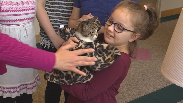 Girl and Kitten Amputees Find Special Bond