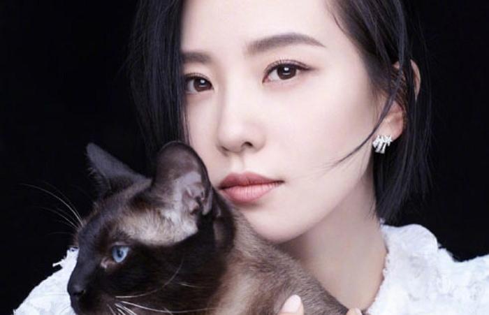 cat sniff 4