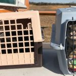 Baltimore Pilot Airlifts Island Cats