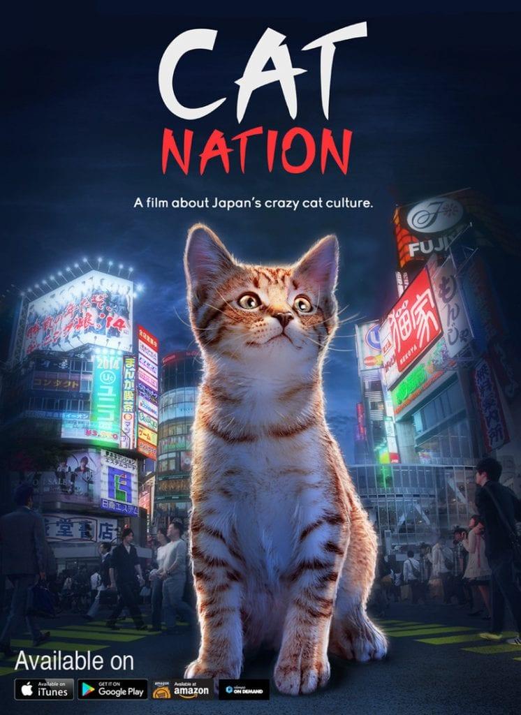 CatNation (PRNewsfoto/Cat Nation)