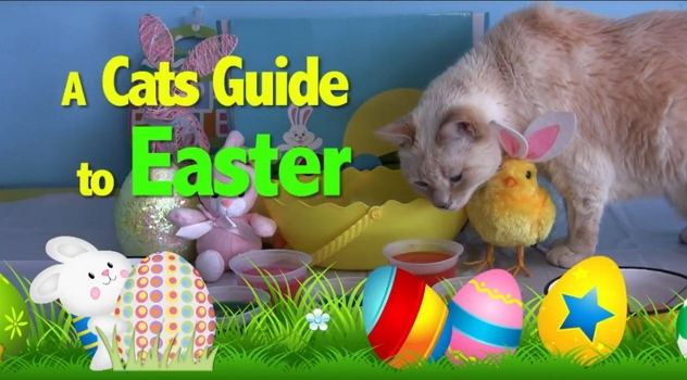 Celebrate Easter the Furball Fables Way